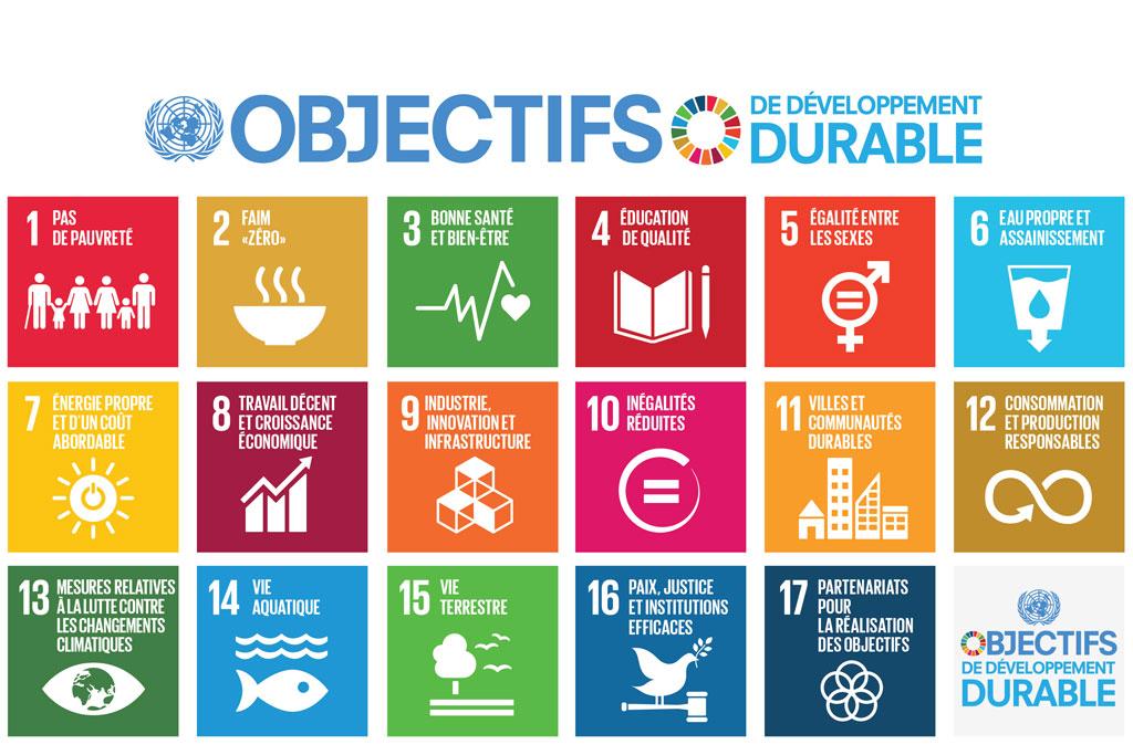 Developpement durable - Photo 2